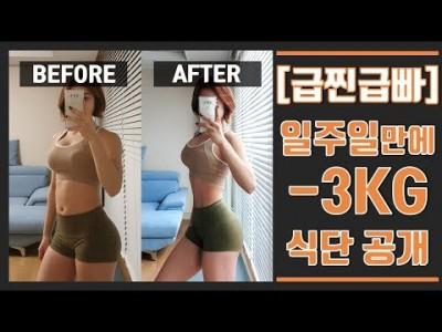 [다이어트 전략] 체중조절 일주일 다이어트 3kg 감량식단 공개/ 유지 식단, 일반식