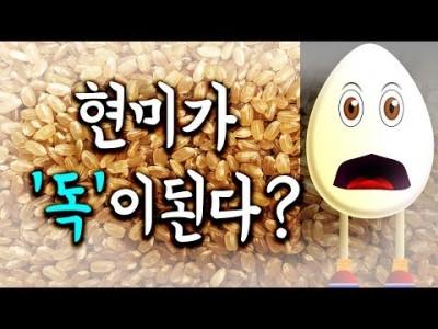 [현미 vs 백미] 현미, 제대로 알고 먹자- 탄수화물 섭취