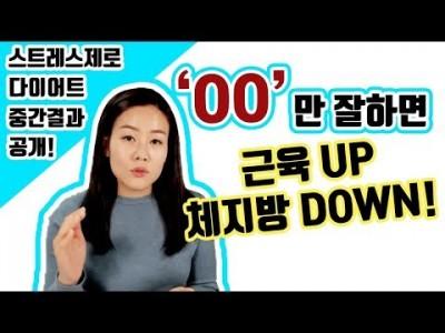 [스트레스제로 다이어트] 중간 점검 인바디 공개 - 결과 공유