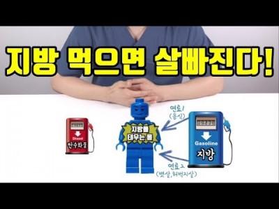[지방섭취 다이어트] 지방 먹으면 살빠지는 이유