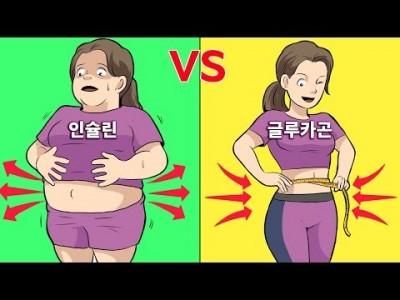 [지방연소 극대화] 지방을 태우는 호르몬을 극대화-인슐린/글리카곤