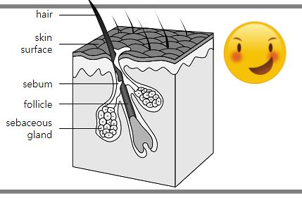 모공관리 방법